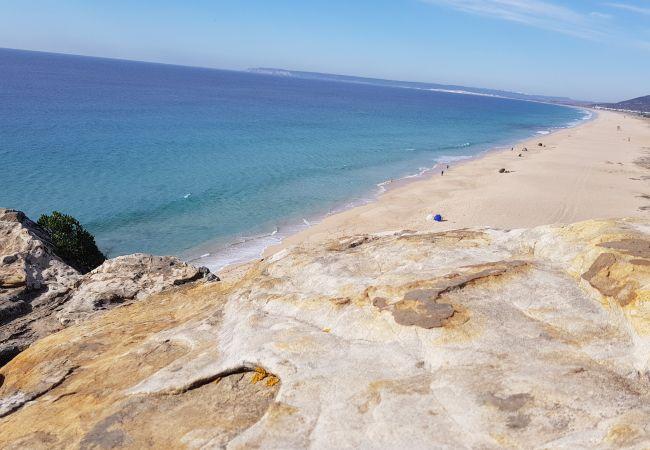 Aires de Zahara - Playa de los Alemanes