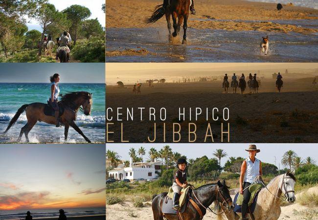 El Arenal - HIPICA