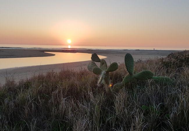 La Fortuna - Playa
