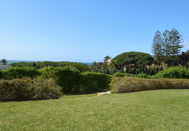 Foto Atlántico IV